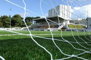 Scottish Football Association surprised by calls for more research into artificial pitches
